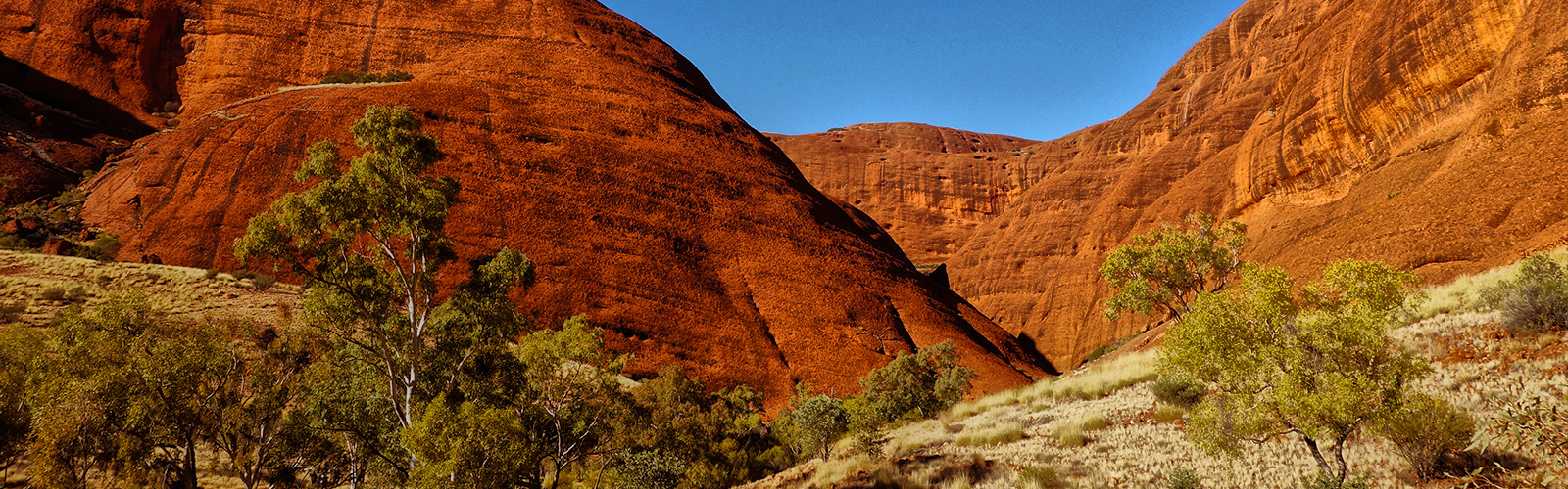 Tips For a Successful Trip to the Australian Outback
