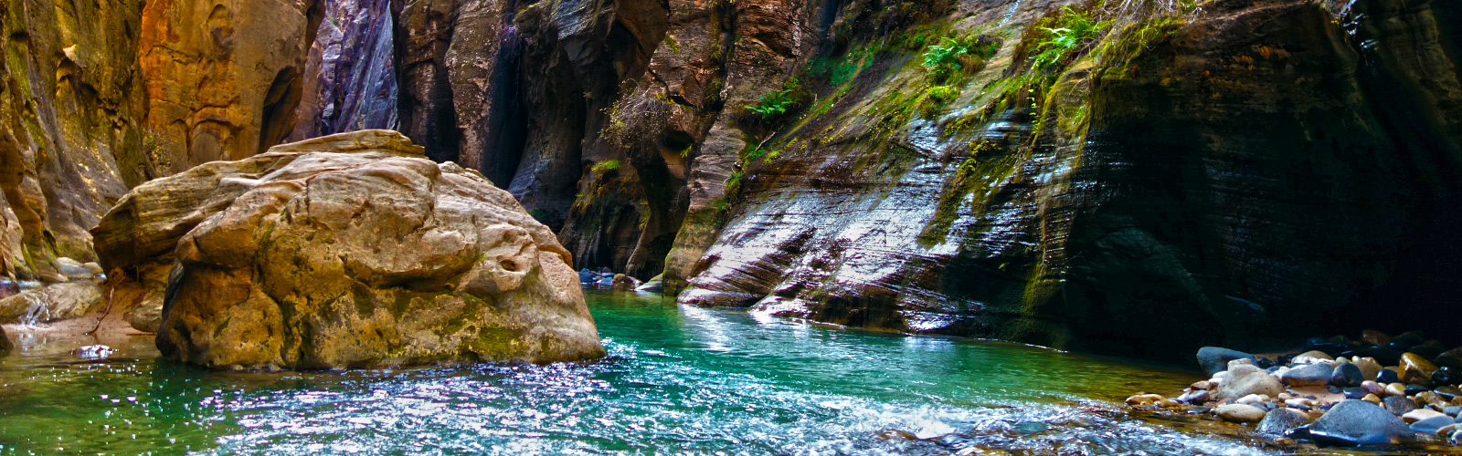 Tips for Hiking The Narrows – Zion National Park