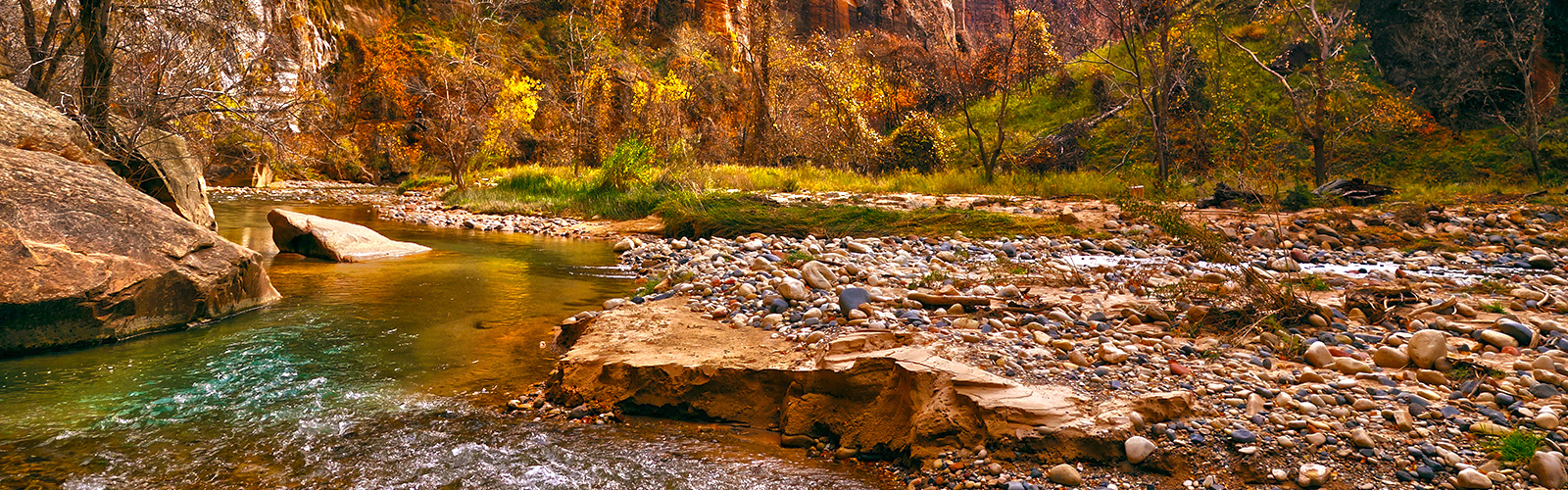 The Must Do's of Zion National Park